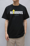NOTORIOUS(13SS-MST-009)