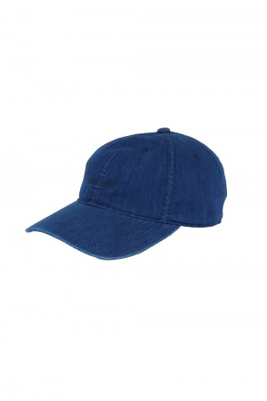 Wild Things SHELTECH  LOGO CAP - ONE WASH (WT21013SG)