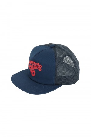Standard California SD STAY STOKED MESH CAP - BLUE